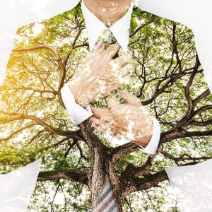 Business man in suit with tree